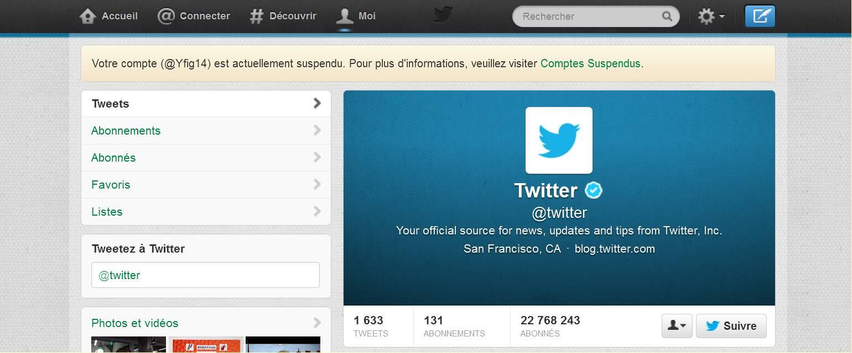 tweeter-suspendu-406f3fd.jpg