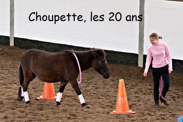 8 ans d'équitation..♥ - Page 7 _mg_5727-copie-3e26b75