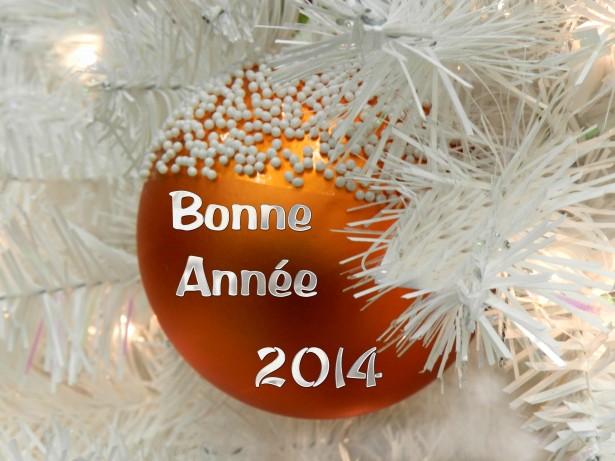 http://img96.xooimage.com/files/3/e/3/bonne-annee-2014-1-42ecbe4.jpg