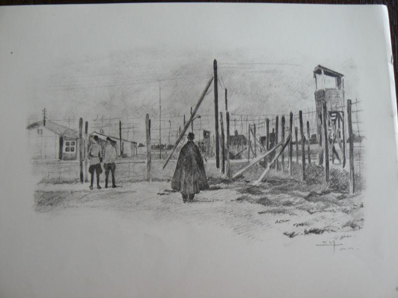 """3 séries de """"dessins de captivité"""" P1090065-42b0a49"""