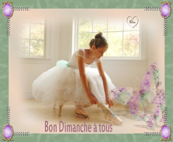 Bon dimanche Babs_brown_ballerina_2mist-4171081