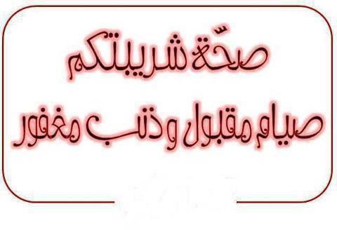 Bonjour tout le monde - Page 15 970413_5817860585...305489_n-3f909a2